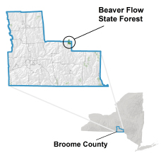 Beaver Flow State Forest locator map