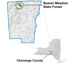Beaver Meadow State Forest locator map