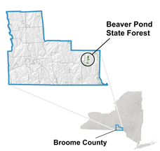 Beaver Pond State Forest locator map