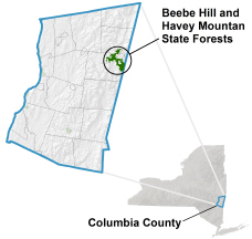 Beebe Hill State Forest locator map