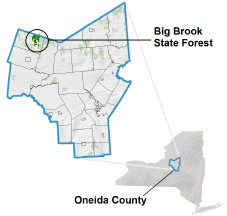 Big Brook State Forest locator map