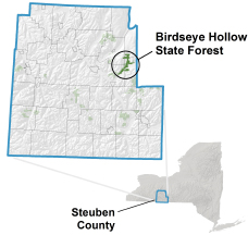 Birdseye Hollow State Forest locator map