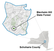 Blenheim Hill State Forest locator map