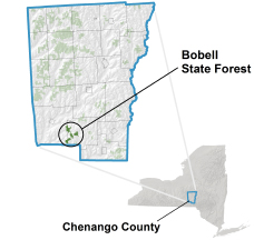 Bobell State Forest locator map