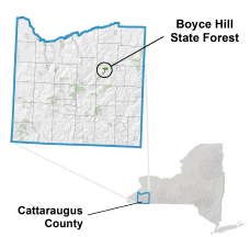 Boyce Hill State Forest locator map