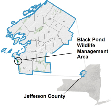 Black Pond WMA locator map
