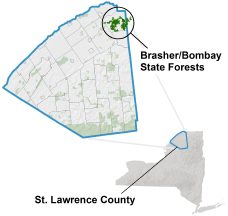 Brasher-Bombay State Forests locator map