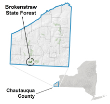 Brokenstraw State Forest locator map