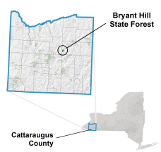 Bryant Hill State Forest locator map