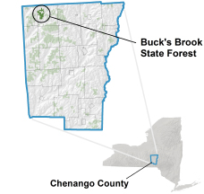 Buck's Brook State Forest locator map