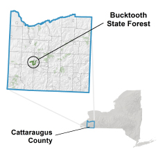 Bucktooth State Forest locator map