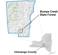 Bumps Creek State Forest locator map