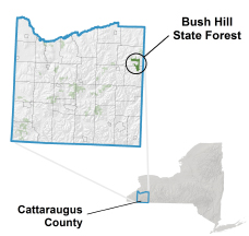 Bush Hill State Forest locator map