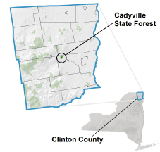 Cadyville State Forest locator map