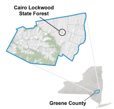 Cairo Lockwood State Forest locator map