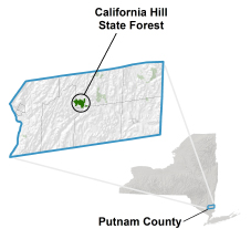 California Hill State Forest locator map