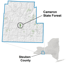 Location map of Cameron State Forest in Steuben County.