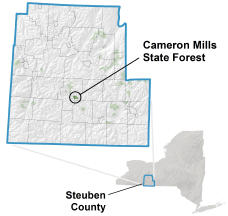 location map of Cameron Mills State Forest