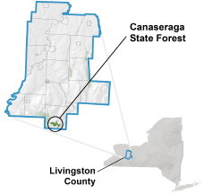 Canaseraga State Forest locator map