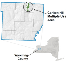 Carlton Hill MUA locator map