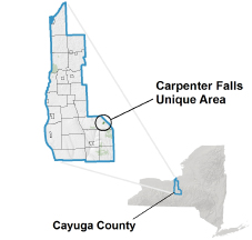 Carpenter Falls Unique Area locator map
