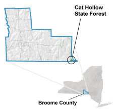 Cat Hollow State Forest locator map