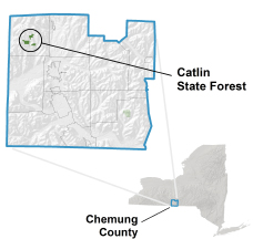 Catlin State Forest locator map