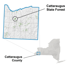 Cattaraugus State Forest locator map