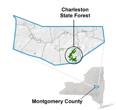 Charleston State Forest locator map