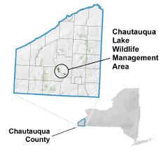 Chautauqua Lake Fish & Wildlife Management Area - NYS Dept. of ... on