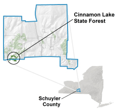 Cinnamon Lake State Forest locator map