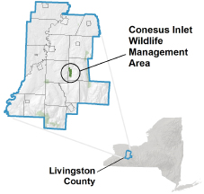 Conesus Island WMA locator map