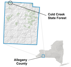 Cold Creek State Forest locator map