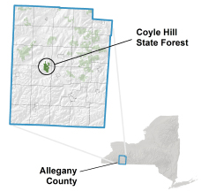 Coyle Hill State Forest locator map