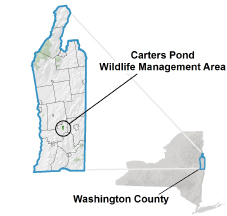 Carters Pond WMA Locator Map