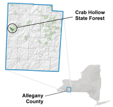 Crab Hollow State Forest locator map