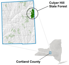 Culyer Hill State Forest locator map