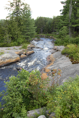 adirondack forest preserve nys dept of environmental conservation