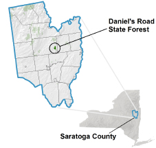 Daniel's Road State Forest locator map