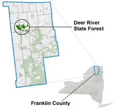 Deer River State Forest locator map