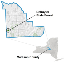 DeRuyter State Forest locator map