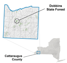 Dobbins State Forest locator map