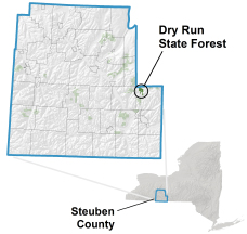 Dry Run State Forest locator map