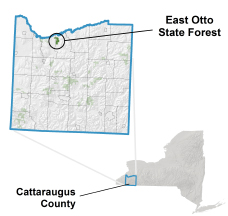 East Otto State Forest locator map