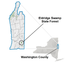 Eldridge Swamp State Forest locator map