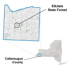 Elkdale State Forest locator map