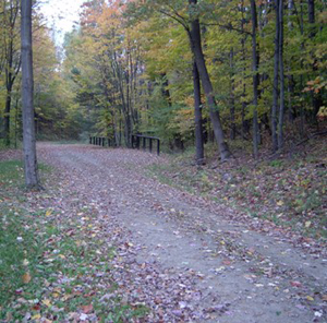 the horse trail in fall, with hitching posts trailside
