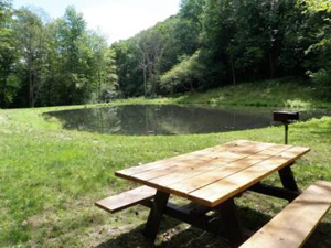A picnic area along the horse trail has charcoal grills and picnic tables.