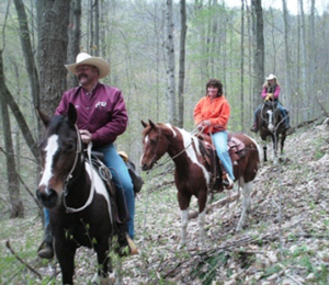 people enjoying horseback riding on one of the trails