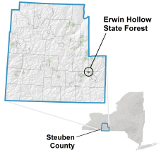 Erwin Hollow State Forest locator map